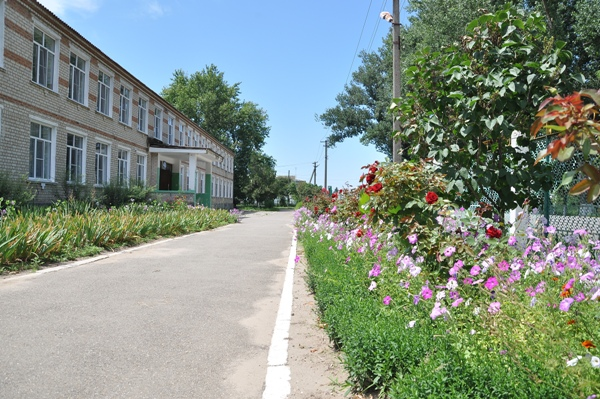 Территория СОШ № 19 ул. Зеленая