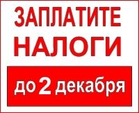 Срок уплаты налогов до 02.12